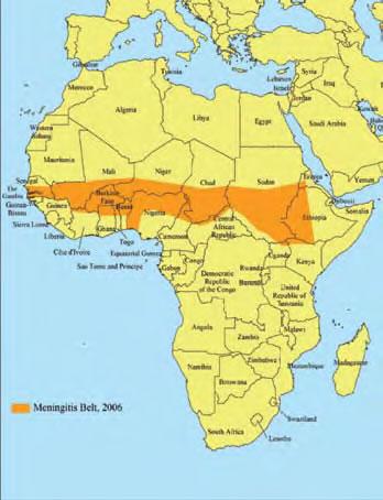 African+meningitis+belt