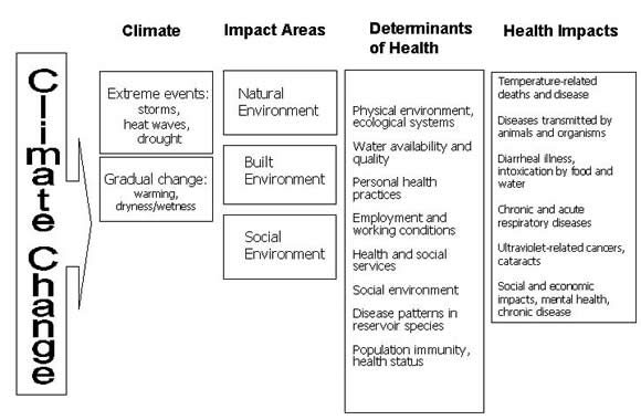Figure 2: Dynamics of Climate Change and Health